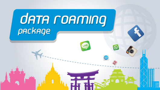 how to clear roaming data
